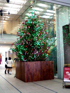 今日のクリスマスツリー