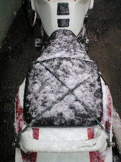 雪なのに…。