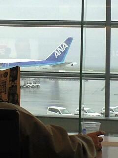 JALからANAへ移動して、