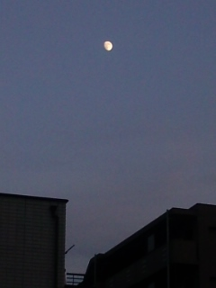 今夜の月は、