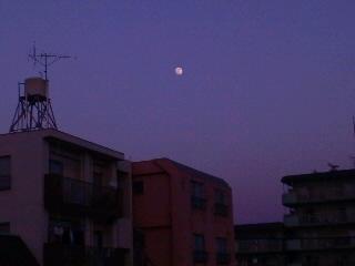 月が出た!
