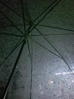 傘につもる雪