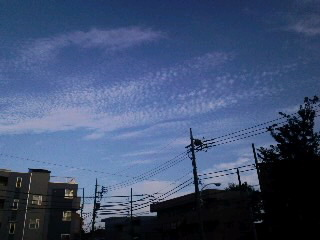 雲が秋っぽくなってきた