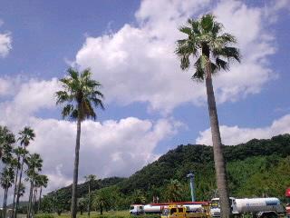 鹿児島の空には、雲が似合う?