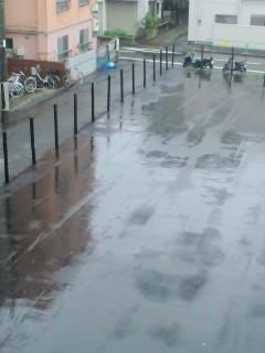 今日は一日中雨