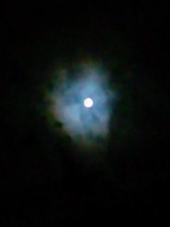 月を見上げて思うのは、願い