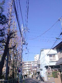 素晴らしく良い天気