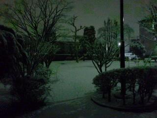 雪の夜の公園