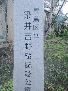 染井吉野の縁の場所