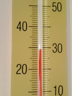 暑い(-o-;)
